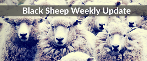 Black Sheep Weekly Update
